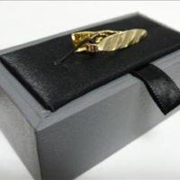 Tie bar Gold stripe
